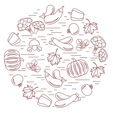 vivacity: Set of autumn seasonal vegetables in circle. Tomato, pepper, zucchini and other fall vegetables for announcement, advertisement, flyer or banner. Vector illustration.