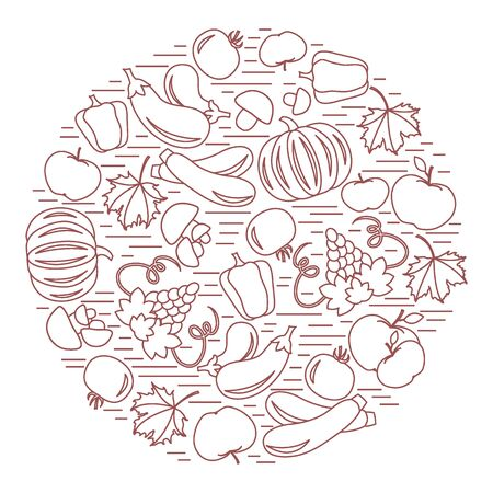 vivacity: Set of autumn seasonal fruits and vegetables in circle. Tomato, pepper, grapes, zucchini and other fall fruits and vegetables for announcement, advertisement, flyer or banner. Vector illustration.