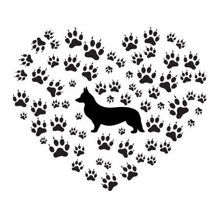 dog walking: Nice picture of Welsh Corgi Pembroke silhouette on a background of dog tracks in the form of heart on a white background.
