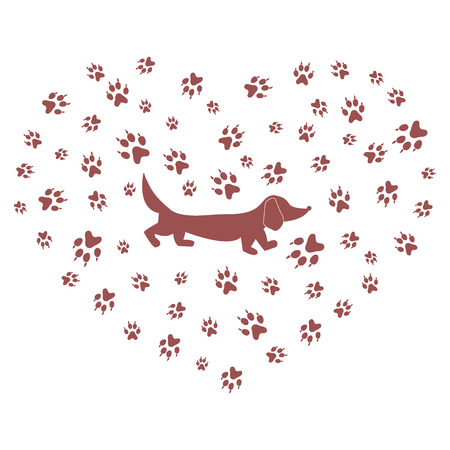 dog walking: Nice picture of dachshund silhouette on a background of dog tracks in the form of heart on a white background. Illustration