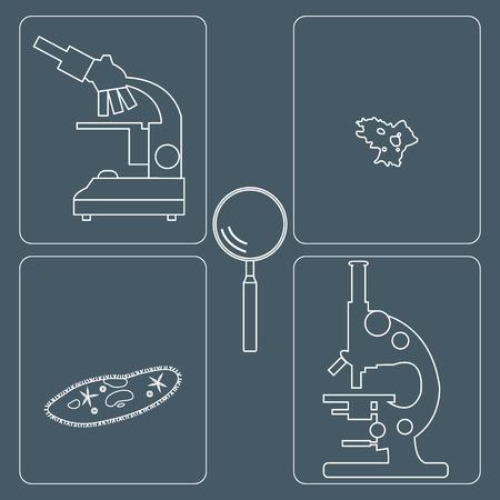 ameba: Stylized icons of microscopes, magnifier, amoeba, ciliate-slipper. Magnifying device sign. Laboratory equipment symbol.