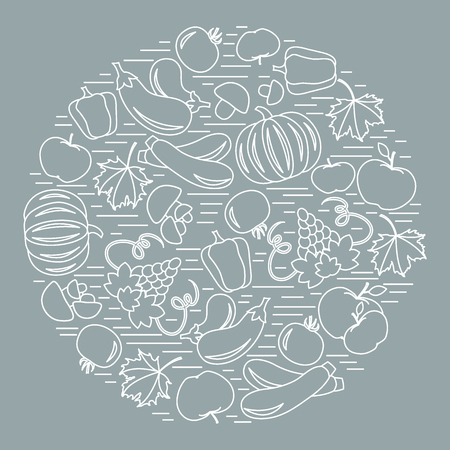 vivacity: Set of autumn seasonal fruits and vegetables in circle. Tomato, pepper, grapes, zucchini and other fall fruits and vegetables for announcement, advertisement, flyer or banner. Illustration