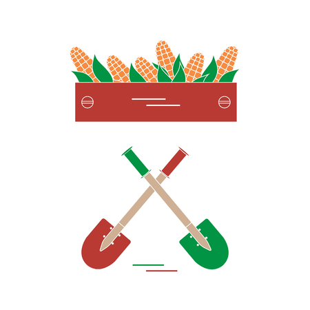 corncob: Cute vector illustration of harvest: two shovels and box of corn. Design for banner, poster or print.