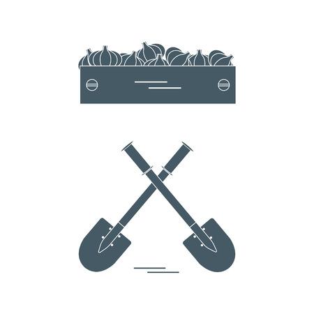 Leuke vectorillustratie van oogst: twee schoppen en doos knoflook. Ontwerp voor banner, poster of print. Stock Illustratie