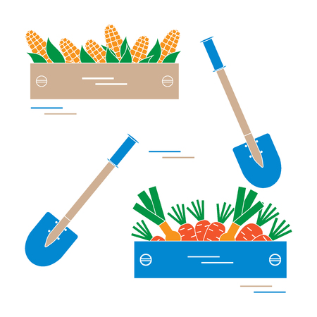 wood crate: Cute vector illustration of harvest: two shovels, two boxes of corn, carrots, and onion. Design for banner, poster or print. Illustration
