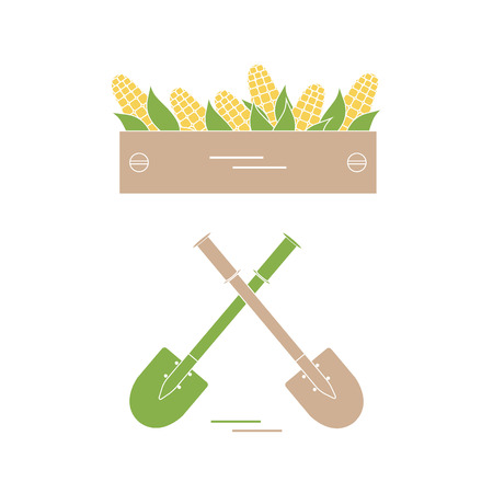 wood crate: Cute vector illustration of harvest: two shovels and box of corn. Design for banner, poster or print.
