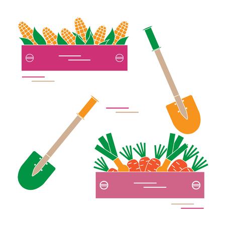 Mignon illustration vectorielle de la récolte: deux pelles, deux boîtes de maïs, des carottes et de l'oignon. Conception pour la bannière, l'affiche ou l'impression. Banque d'images - 82283805