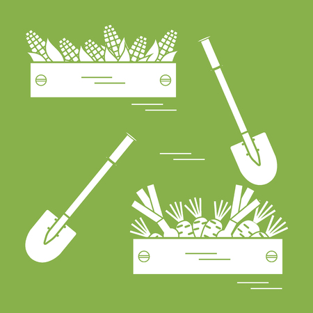 sweetcorn: Cute vector illustration of harvest: two shovels, two boxes of corn, carrots, and onion. Design for banner, poster or print. Illustration