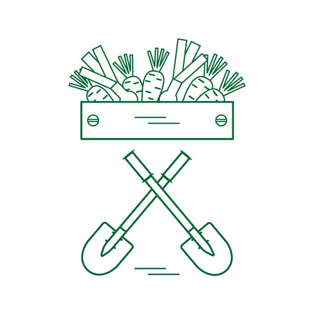 crunchy: Cute vector illustration of harvest: two shovels, box of carrots and onion. Illustration