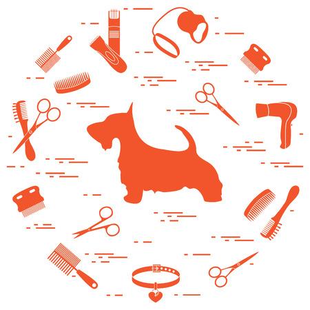 Pet shop symbols pattern.