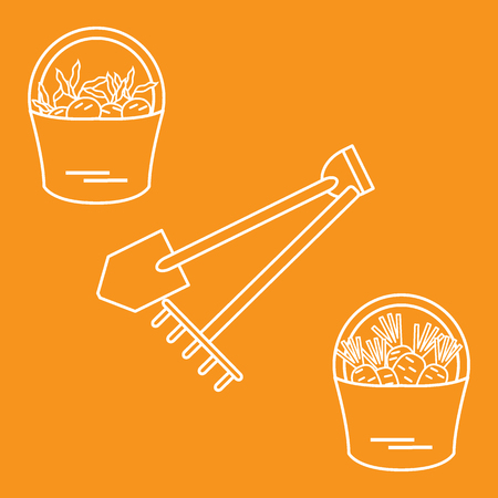 Illustration of harvest: shovel, rake and two buckets of carrots and beets. Design for banner, poster or print. Illustration