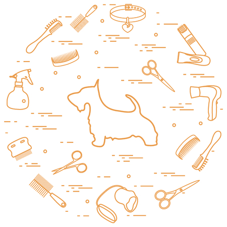 Scotch terrier silhouette, combs, collar, leash, razor, hair dryer, scissors, sprayer arranged in a circle. Health care, grooming, caring for a dog, exhibition. 일러스트