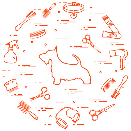 Scotch terrier silhouette, combs, collar, leash, razor, hair dryer, scissors, sprayer arranged in a circle. Health care, grooming, caring for a dog, exhibition. Ilustrace