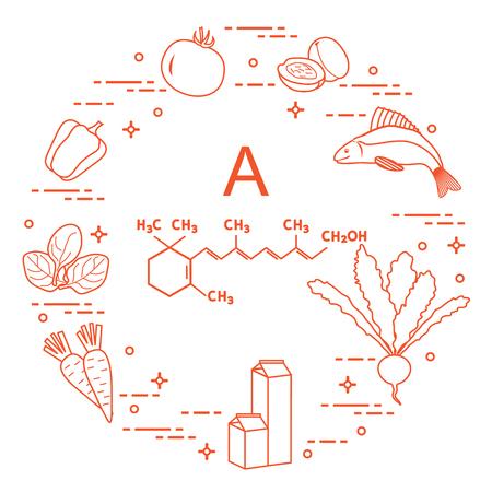 Food rich in vitamin A vector illustration Illustration