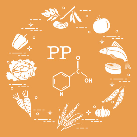 Foods rich in vitamin PP. Beans, fish, tomato, soya beans, peas, garlic, wheat, carrots, cabbage, pepper icon.
