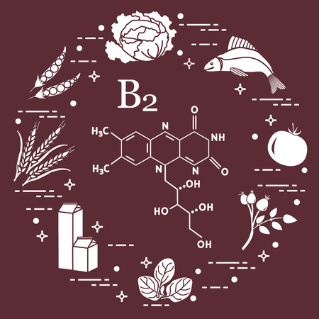 Foods rich in vitamin B2. Cabbage, fish, tomato, dog rose, spinach, milk, wheat, peas.