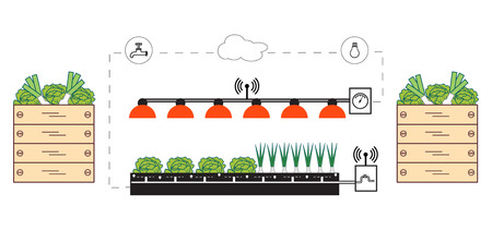 Smart farm and agriculture. Monitoring and control of temperature, humidity, light level. Cultivation of plants. New technologies. High yield.