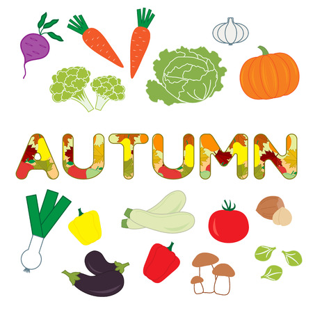 Vector illustration with carrot, zucchini, cabbage, pepper, pumpkin, onion, garlic, tomato, beetroot, brussels sprouts, cauliflower, mushrooms, eggplant, nuts and autumn inscription.