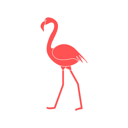 Vector illustration with Flamingo bird. Design for poster or print.