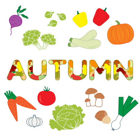 Vector illustration with carrot, zucchini, cabbage, pepper, pumpkin, onion, garlic, tomato, beetroot, brussels sprouts, cauliflower, mushrooms, nuts and autumn inscription.