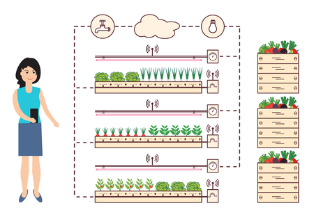 Woman controls the smart farm and agriculture. Monitoring and control of temperature, humidity, light level. Cultivation of plants. New technologies. High yield.  イラスト・ベクター素材