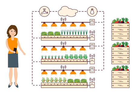 Woman controls the smart farm and agriculture. Monitoring and control of temperature, humidity, light level. Cultivation of plants. New technologies. High yield. Illustration