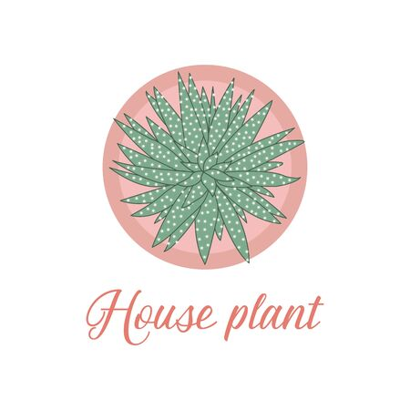 Vector illustration with house plant isolated on white background. Potted houseplant. Green natural decor for home and interior. Trendy background. Flat style. Design for card, banner, poster, print.