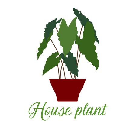 Vector illustration with house plant isolated on white background. Potted houseplant. Green natural decor for home and interior. Trendy background. Flat style. Design for card, banner, poster, print. Reklamní fotografie - 133777491