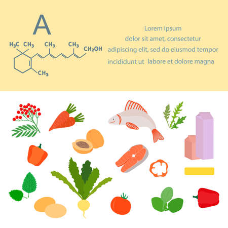 Vector illustration Vitamin A sources. Healthy food containing carotene, enriched with vitamins. Proper natural nutrition, dietetic organic products. Dairy products Eggs Greens Vegetable Fruits Fish 矢量图像