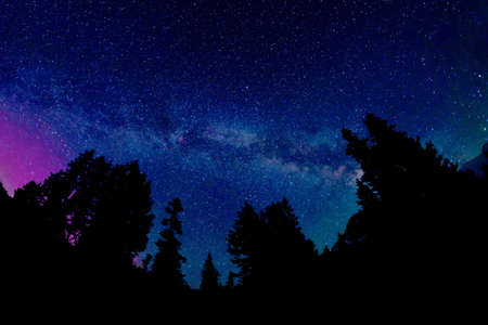 Milky Way and Aurora Borealis. Night sky with  northen lights, Galaxy, Stars and Constellations, trees and mountains silhouettes at Mount Baker National Forest, Bellingham,  Washington, USA.
