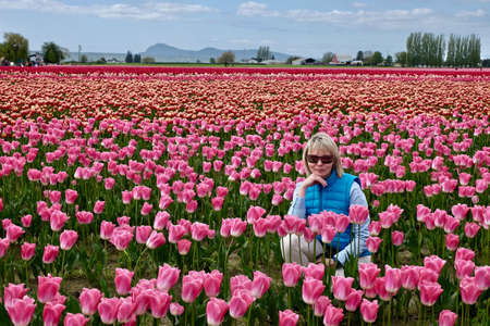 Mount Vernon Tulip Festival. Tulip Town. Seattle. Washington. United States.