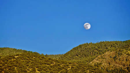 pasadena: Full Moon over hills and forest. Los Angeles. Pasadena. Angeles National Forest. San Gabriel Mountains. California. United States.
