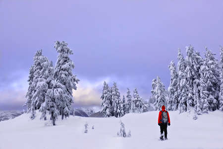 Winter snowshoe hiking in mountains. Active outdoorsman hikes to the top of a mountain range at sunset. Crater Lake National Park. Portland. Oregon. United States. Stock Photo
