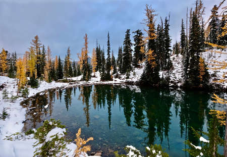 Little lake and yellow trees reflected in calm water. First snow on mountains and golden larches reflected in clear mirror lake. Blue lake in North Cascades National Park. Winthrop, Seattle. WA. United States.