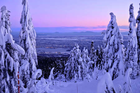 Vancouver skyline in winter from Cypress Mountain ski run. Frozen trees covered with snow and frost at sunset.  North Vancouver. British Columbia. Canada.