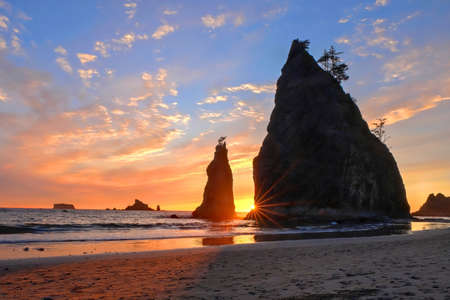 Coastline with sea stacks at sunset. Rialto Beach in Olympic National Park, Olympic Peninsula near Seattle, Olympia and Port Angeles. Washington. United States of America.