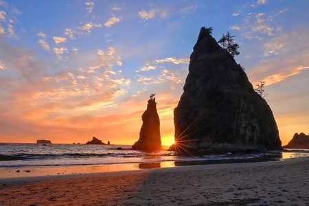 Kustlijn met zeestapels bij zonsondergang. Rialtostrand in Olympisch Nationaal Park, Olympisch Schiereiland dichtbij Seattle, Olympia en Port Angeles. Washington. Verenigde Staten van Amerika.