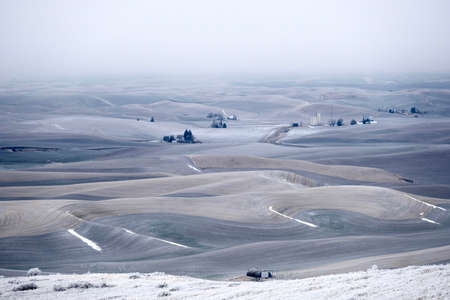 Rolling hills covered with frost and snow in winter. Foggy morning soft light on the farmlands in agricultural Palouse, southeast Washington. Moscow, Idaho. USA.