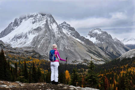 Brave woman hiker with backpack and hiking poles on the cliff looking at snow covered mountains and valley with yellow larch trees. Burstall Pass in Canadian Rockies. Kananaskis. Alberta. Canada