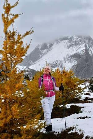 Young smiling woman happily looking at beautiful golden larch tree hiking in Canadian Rockies. Lake Louise area.  Banff Nantional Park. Alberta. Canada.