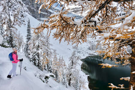 Young woman hiking in Canadian Rockies among golden larch trees covered with fresh snow and beautiful alpine lake. Lake Agnes in Banff National Park. Big Beehive hiking trail. Alberta. Canada.