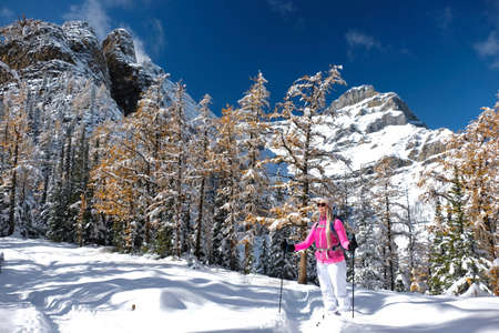 Young blond woman showshoeing in Canadian Rockies on a bright sunny day.  Yellow larch trees covered with fresh snow in rocky mountains near. Big Beehive hiking trail in Lake Louise area. Alberta. Canada