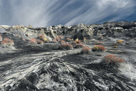 Rock desert with hoodos and colorful bushes after the rain. Bisti badlands near Framington. Valley of Dreams.  New Mexico. United States of America