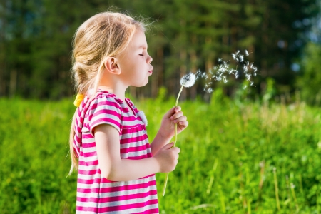 wish: Blond little girl blowing a dandelion Stock Photo