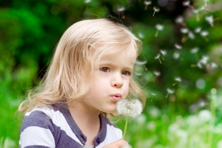Lovely little blond little girl blowing a dandelion and making a wish in summer day