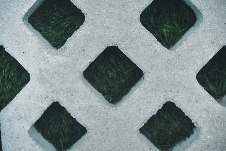 weed block: Closeup on green grass and concrete pavement, background texture Stock Photo