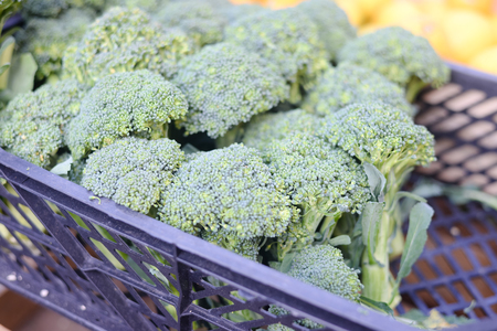brocolli: Fresh green brocolli stacked in the market for sell. Closeup image