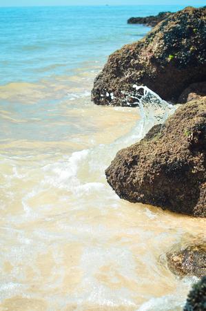 seacoast: Stone rock seacoast, nature background outdoors, closeup