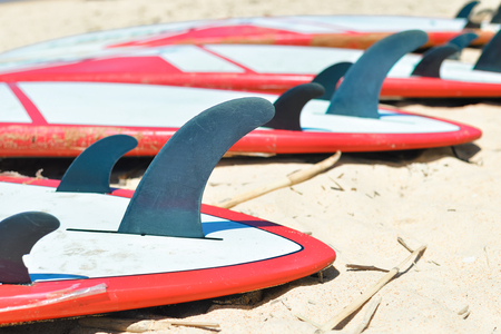 surfboard fin: Group of surfboards lying on sand ocean beach background, closeup outside