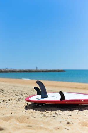 surfboard fin: Ocean view, surfboard tail with three fins, blue sky background